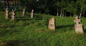 Cruci celtice Ariniș
